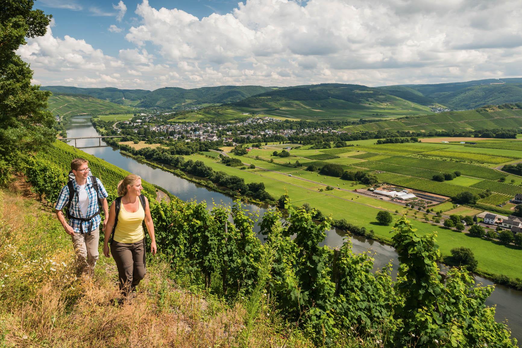 Wandern oberhalb der Weinberge im Programm Aktivwoche