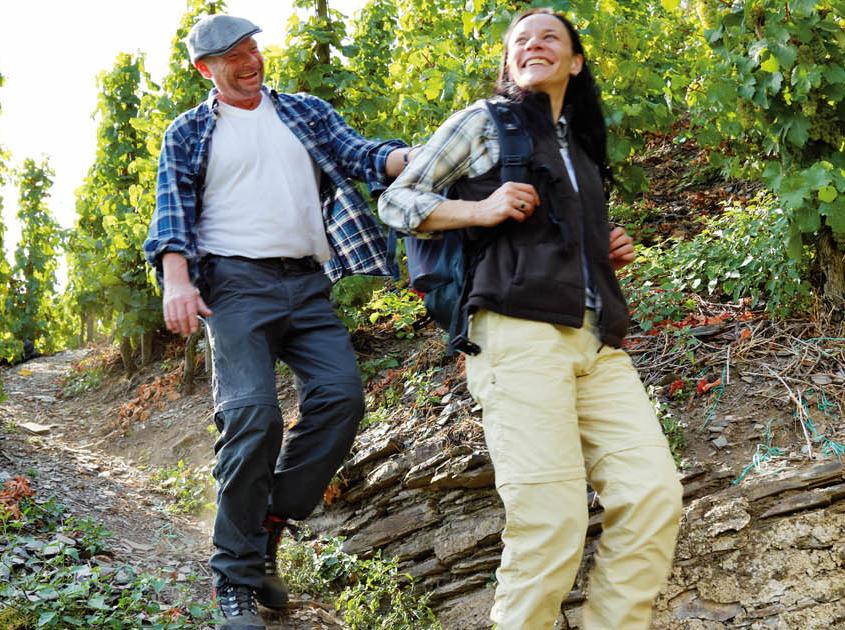 Wandern in den Weinberge und dem Klettersteig